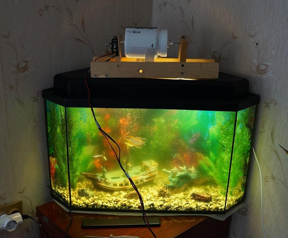 Как сделать кормушку для аквариумных рыбок