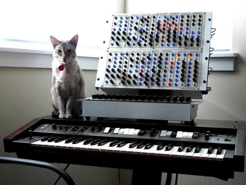 Модульный синтезатор своими руками