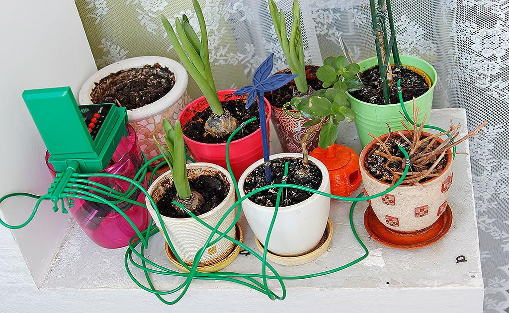 Автономная система полива комнатных растений своими руками 9