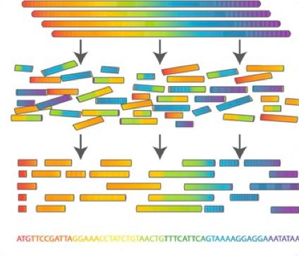 Bioinformatics research paper