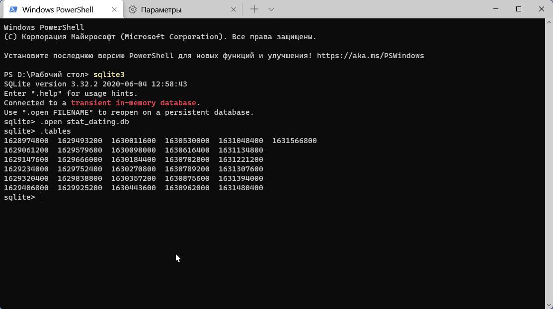 WindowsTerminal_fxzDrIgEGk.png