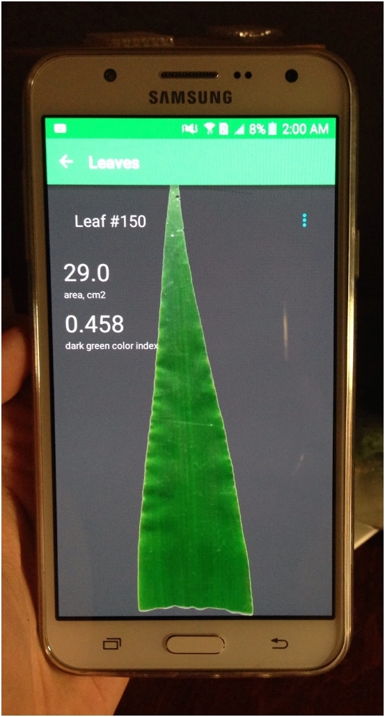 Screenshot of a mobile application, developed by agritech statrup Petiole, that helps to measure specific leaf area for agronomists and plant breeders. Photo credit: Petiole