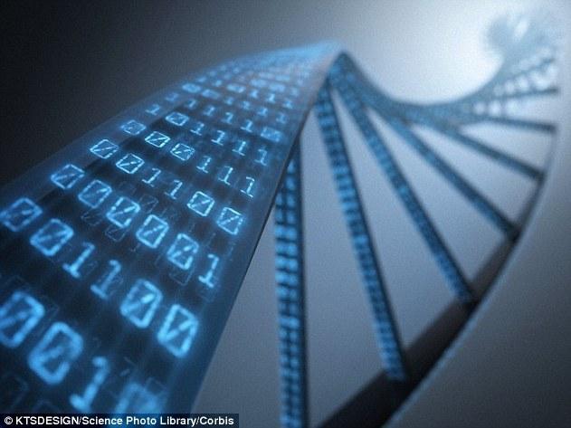 Как создать торгового робота с помощью генетического программирования