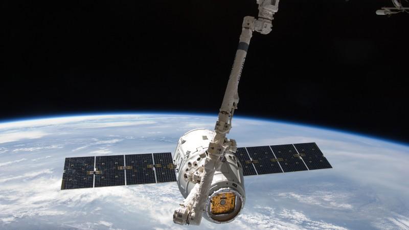SpaceX отправит 40 мышей на МКС