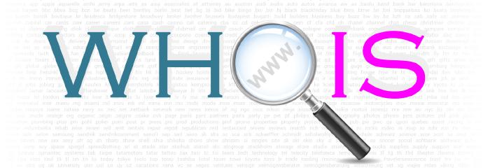 Делаем собственный сервис по определению WHOIS любого домена / Хабр