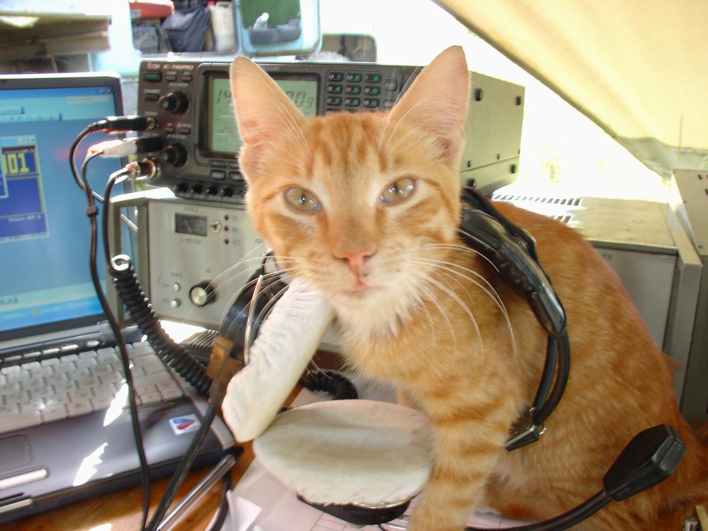 Как я стал радиолюбителем и зарегистрировал своё первое РЭС
