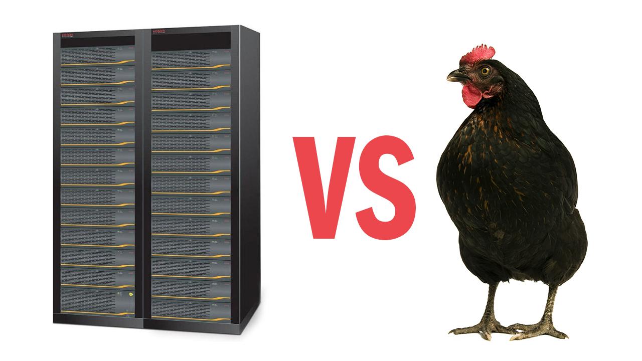 Чем СХД отличается от курицы?