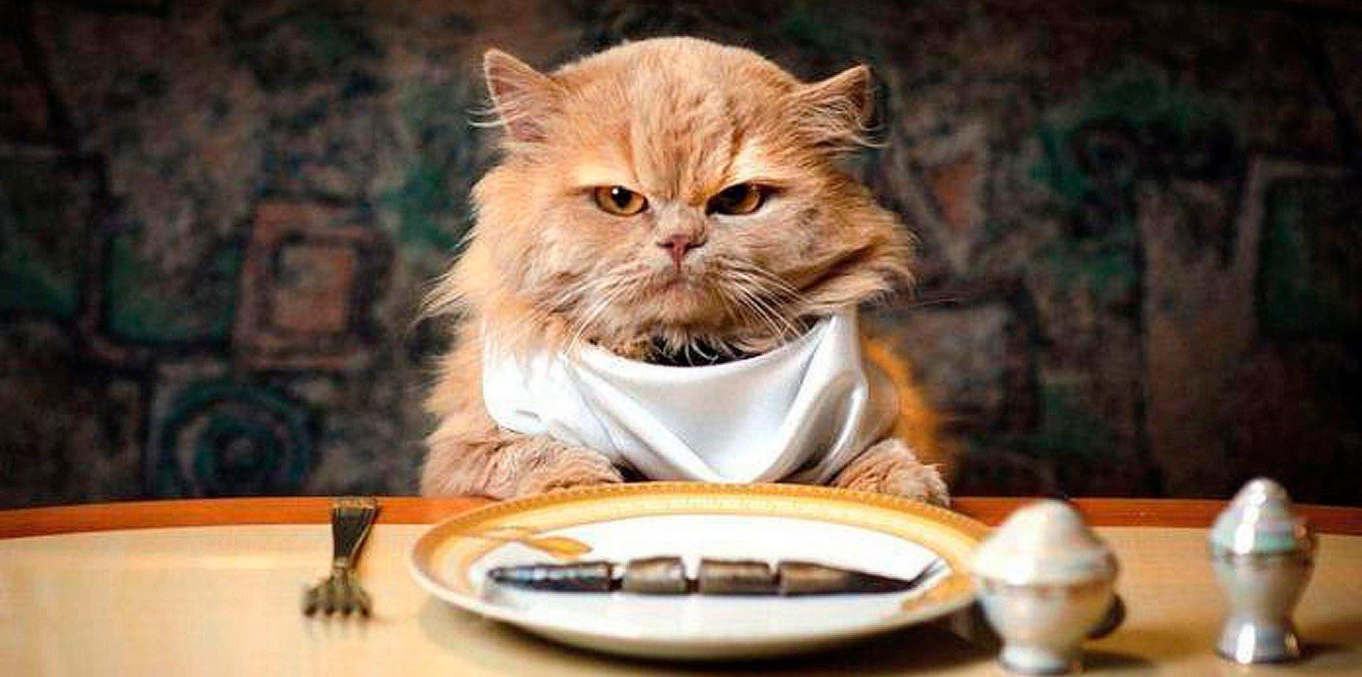 Смешные картинки за обедом