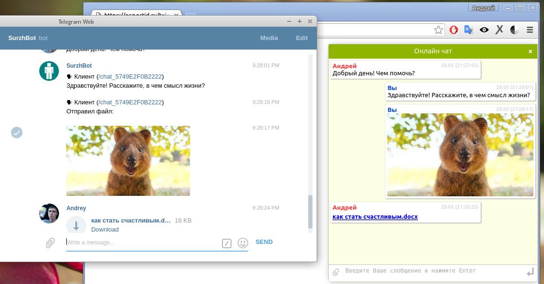 Она хочешь мне веб и чат бесплатно фото 592-750