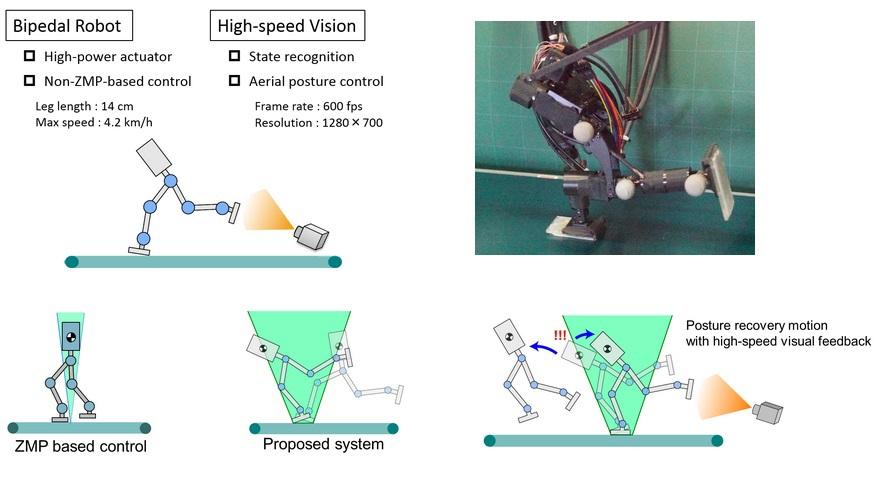 В Университете Токио разработали быстрого двуногого робота-бегуна с новой системой балансировки