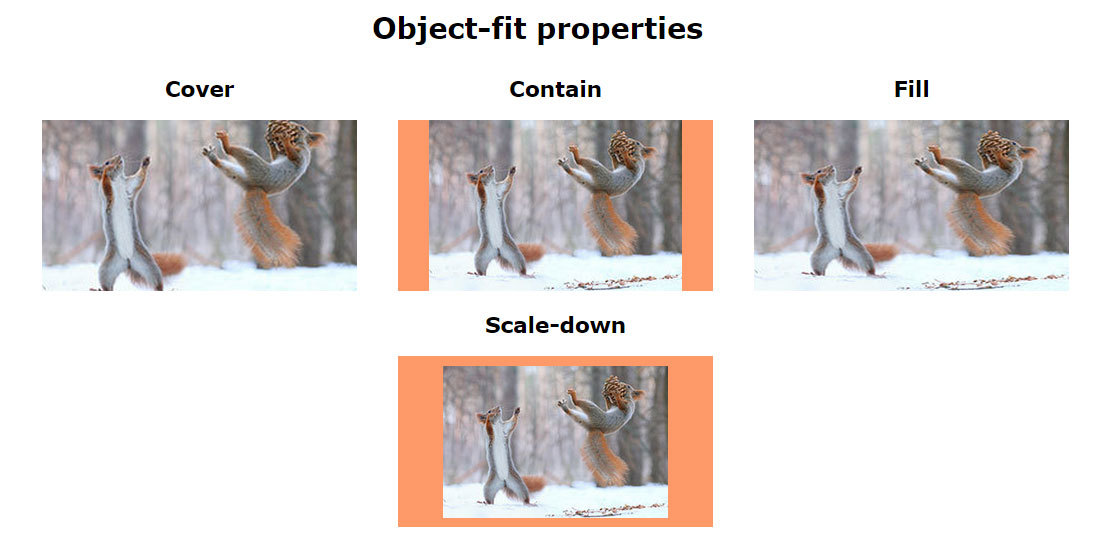 css object-fit