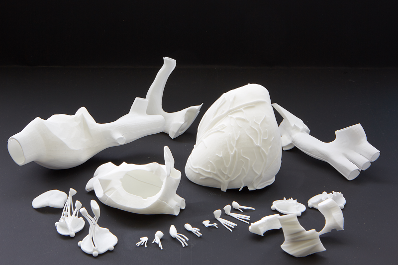 3d printed heart_prototypster