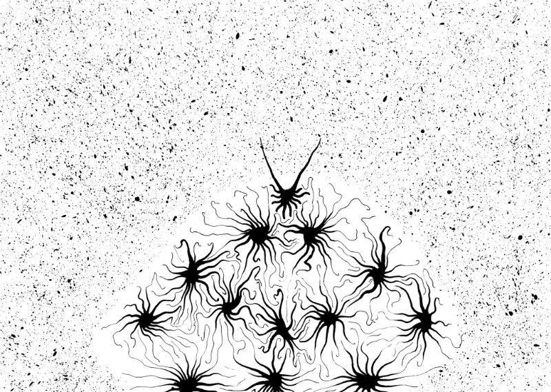 Как мы анализируем уязвимости с помощью нейронных сетей и нечеткой логики