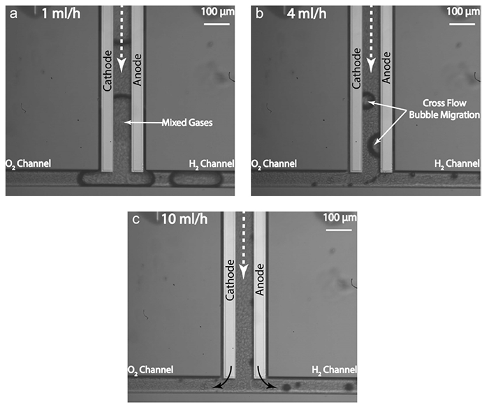 Картинки по запросу мембрана водород