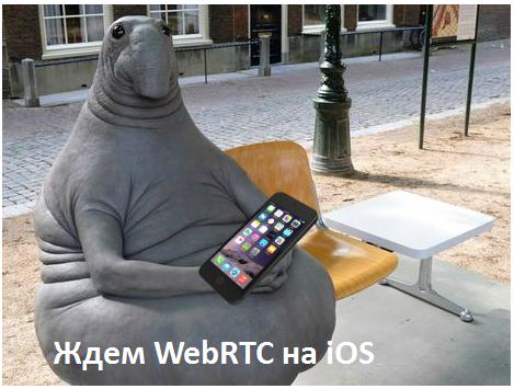 WebRTC, Safari