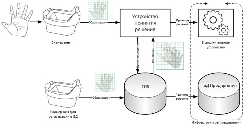 Biometrics: Accounting of working hours + Fujitsu PalmSecure