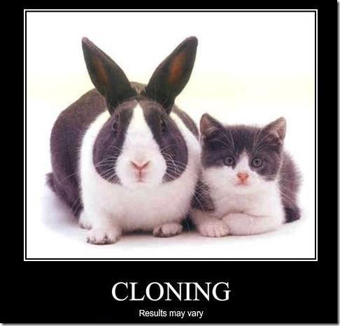 Клонирование