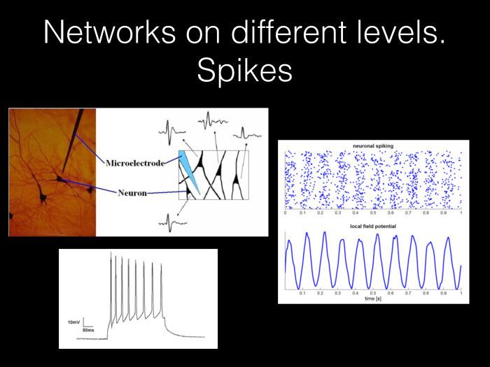 Исследование связности в мозге на основе электрофизиологических данных. Лекция в Яндексе
