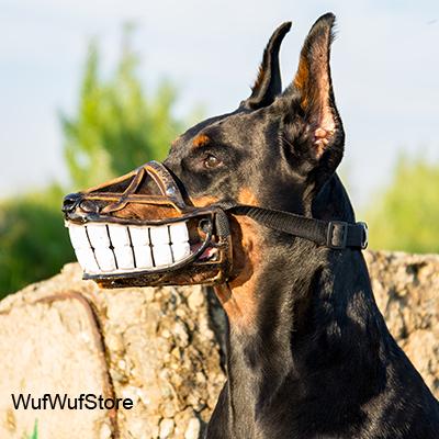 Dog Muzzles For Sale Australia