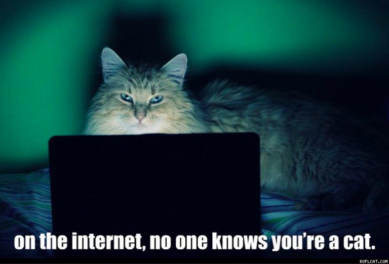 Дискриминация котов: веб-трекинг через невидимые картинки
