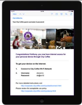 Пример реквизитов, полученных на e-mail