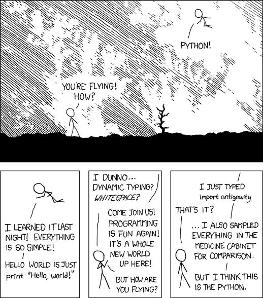 Должны ли все изучать программирование?