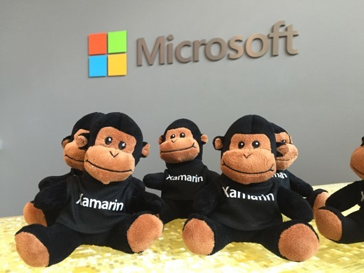 Мастер-класс по разработке на Xamarin: обзор технологии и погружение в разр ...