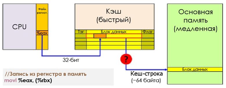 d2e36273de1649389cec1a7bb67a4926.png