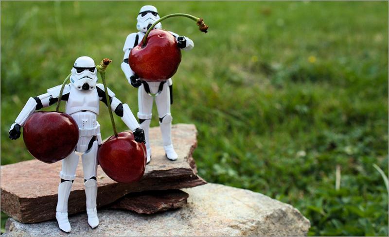 Новый Cherry Framework 4 | Вишенки созрели
