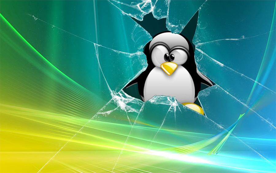 Веб-хостинг: Windows или Linux?