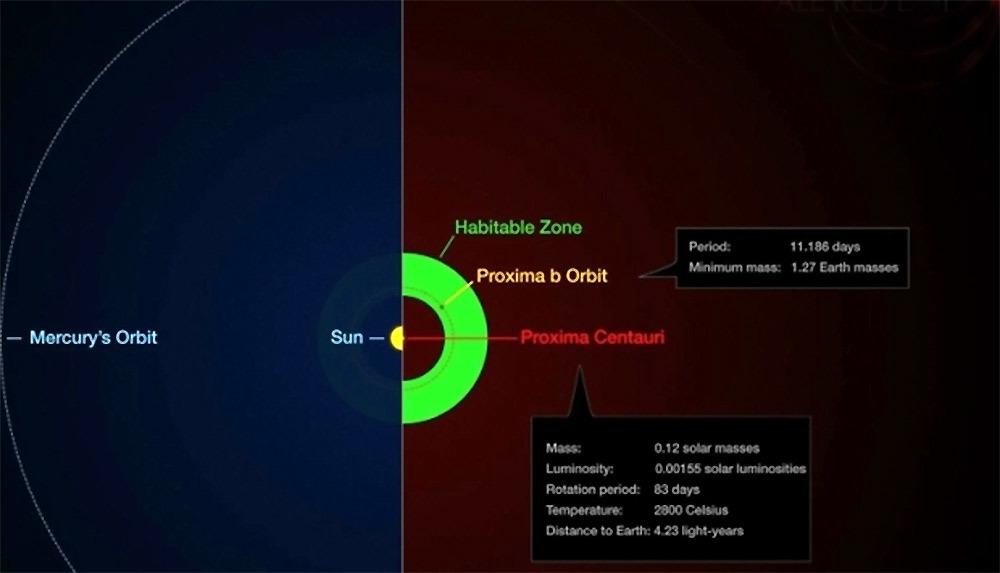 Какие организмы способны выжить на Проксиме Центавра b под вспышками жёсткого ультрафиолета от красного карлика?