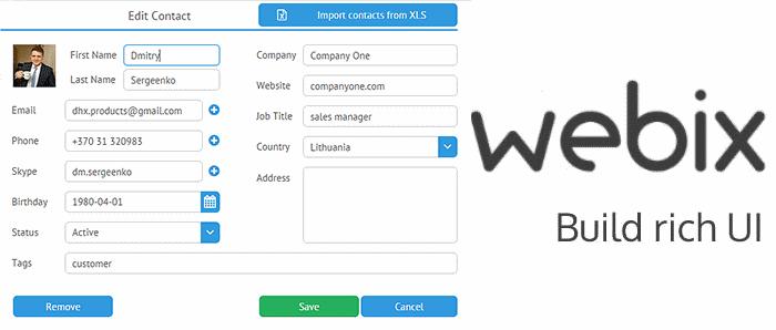 Работа с формами в Webix UI