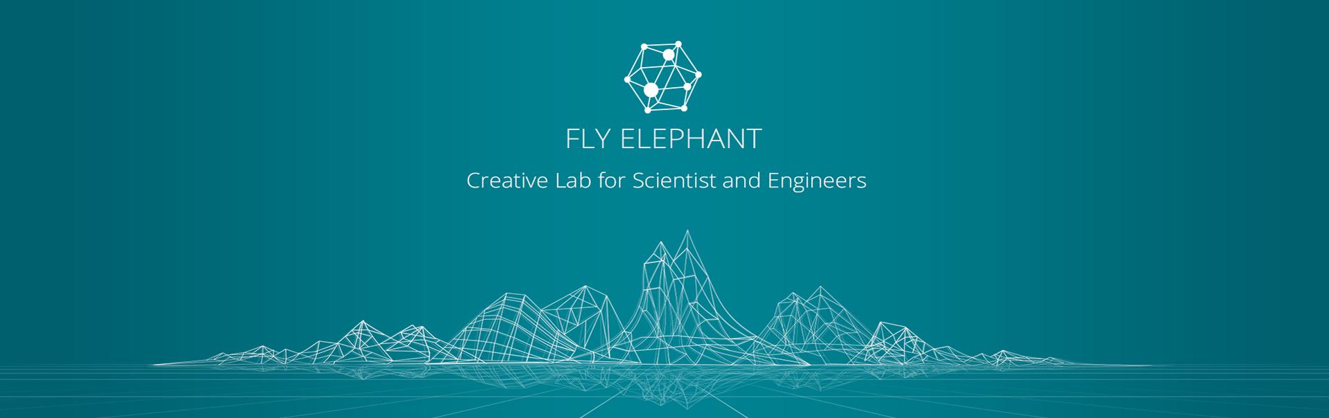 FlyElephant – креативная лаборатория для научных сотрудников и инженеров. Часть 1. История создания
