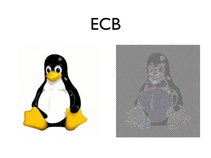 Кртинка, зашифрованная в режиме ECB