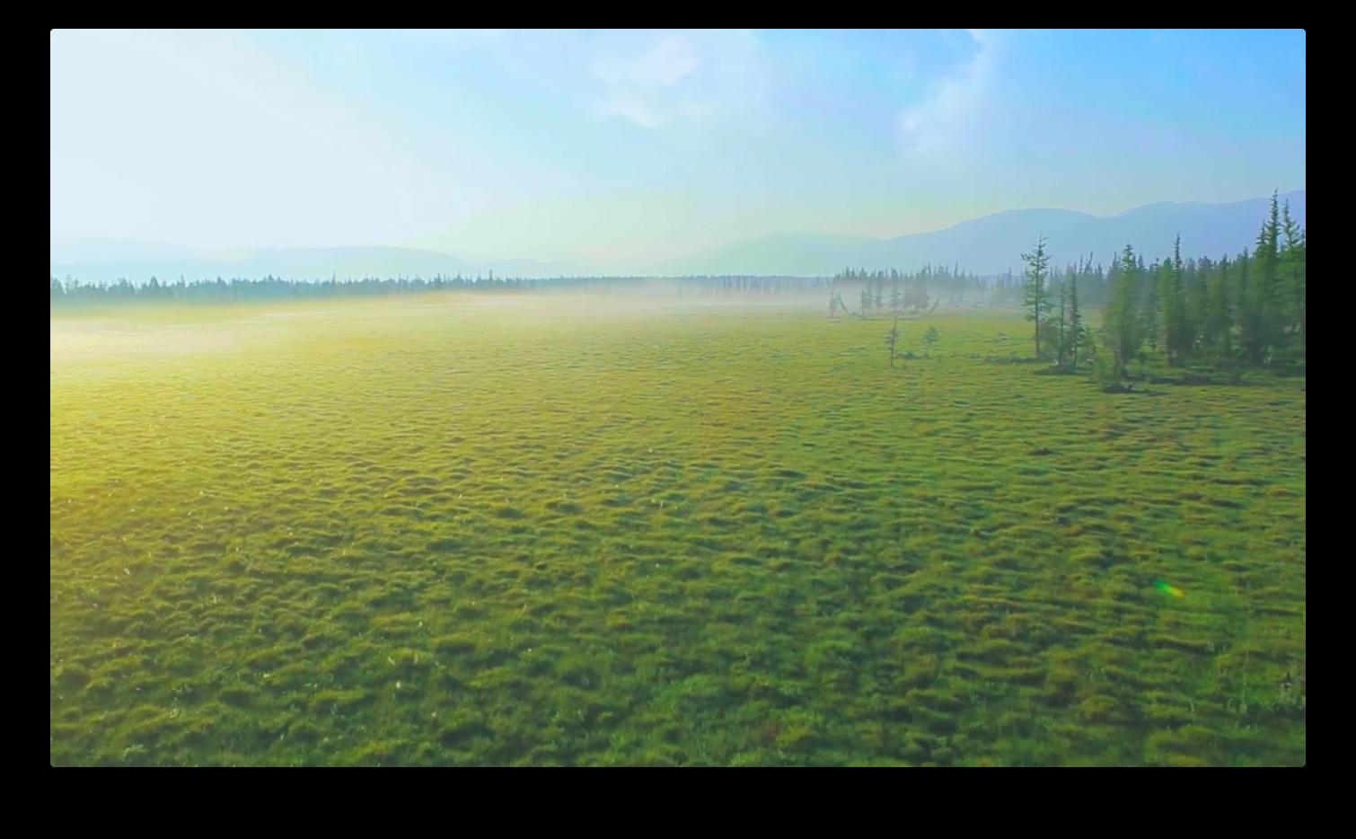 Картинки природы для браузера