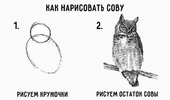 Рисуем остаток совы на базе нейросетей