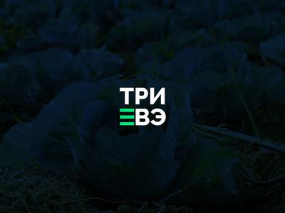 Preview eb38683207
