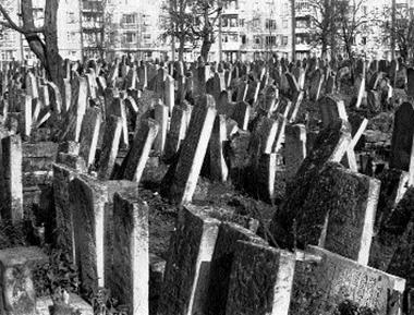 Кладбище стартапов