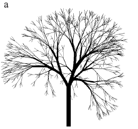 Рисунок 2.8a. Модели деревьев с тернарным ветвлением.