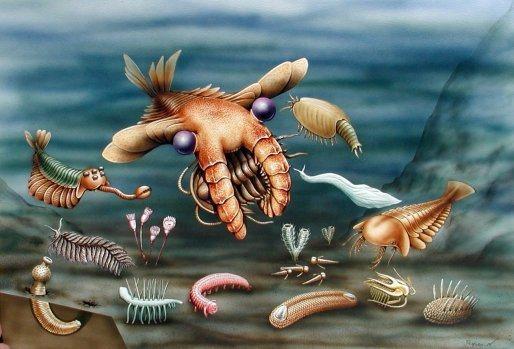Реконструкция облика животных фауны Сланцев Берджесс