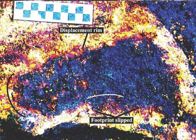 Археологи обнаружили отпечатки ног людей в отложениях возрастом 13000 лет на канадском пляже
