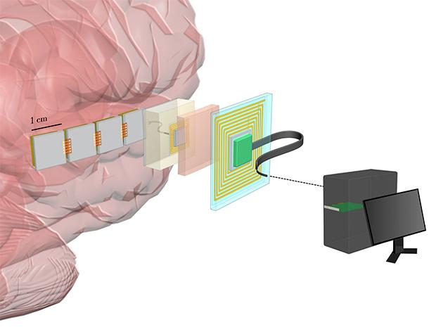 Интерфейс мозг-компьютер своими руками