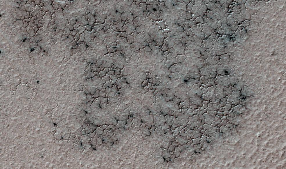 Любители астрономии помогли ученым изучить «пауков» на Южном полюсе Марса