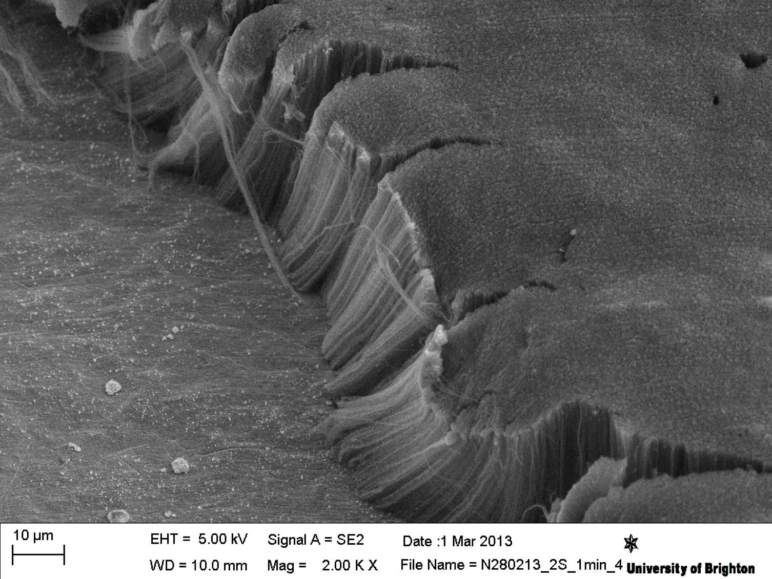 Самый черный материал на Земле не дает тонуть в воде алюминиевому диску