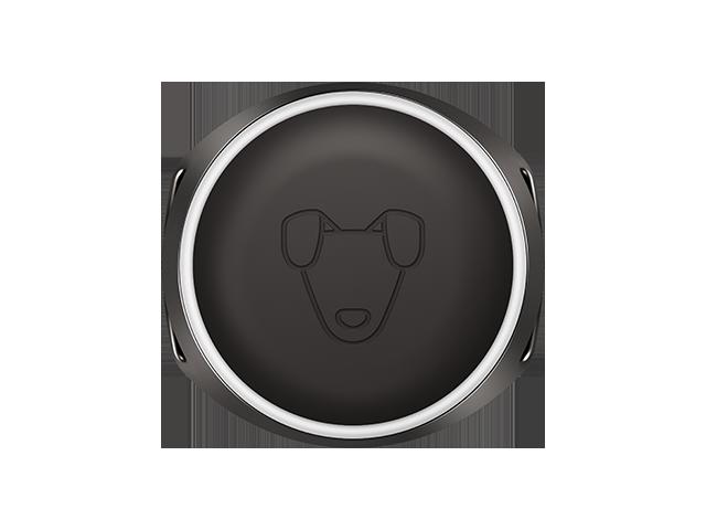 Кастомная GPS-антенна, SIM-чип, процессор и 8Мб памяти: из чего сделан умный собачий ошейник Mishiko