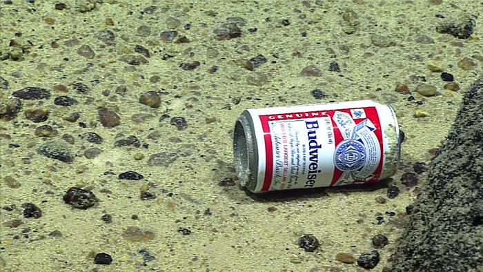 Кто проживает на дне океана? SPAM и банки из-под пива