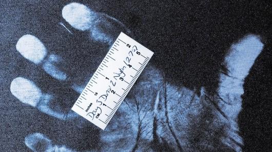 На чем остаются отпечатки палтцев