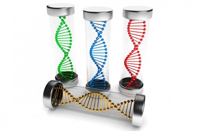 В MIT разработали программируемые под различные заболевания РНК-вакцины