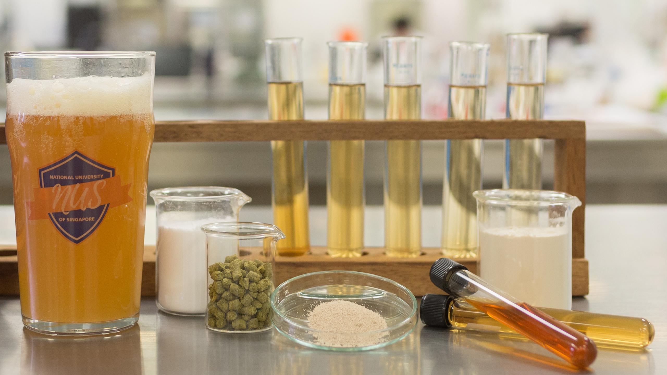 Учёные создали пиво с полезными кишечными бактериями