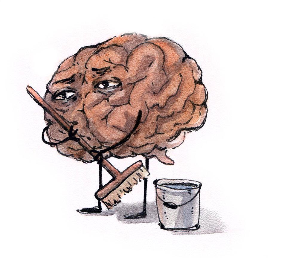 [Перевод] Новости нейробиологии: бессонный мозг ест сам себя, волшебная шляпа Илона Маска, переключатель-кутила, и кое-что ещё
